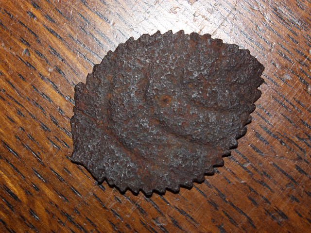 Iron Rose Leaf from Camooweal Cemetary