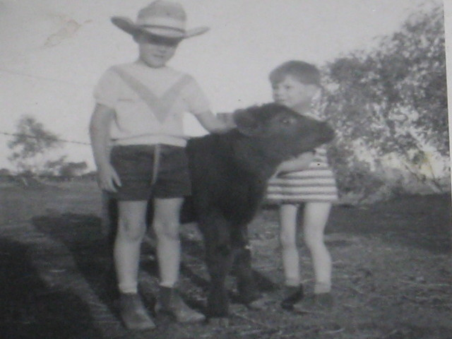 Neville and Ashley with a poddy calf around 1970