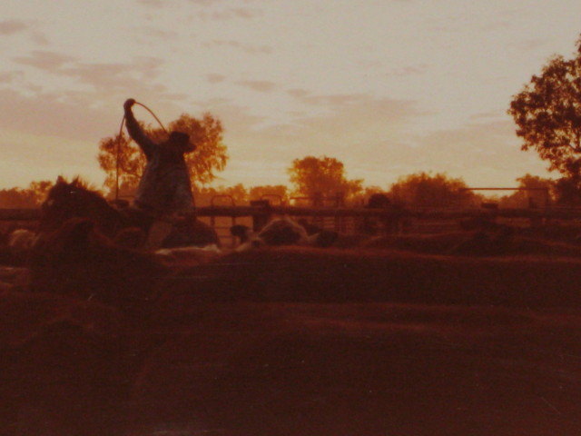Roping at Sunset
